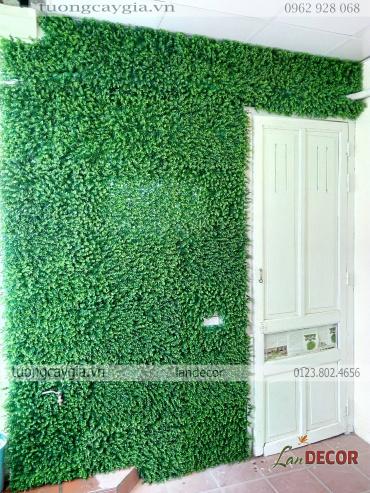 Tạo ấn tượng cho ngôi nhà của bạn với tường cây giả