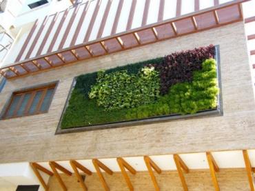 Nhà sẽ mát rượi nhờ mảng tường cây xanh này
