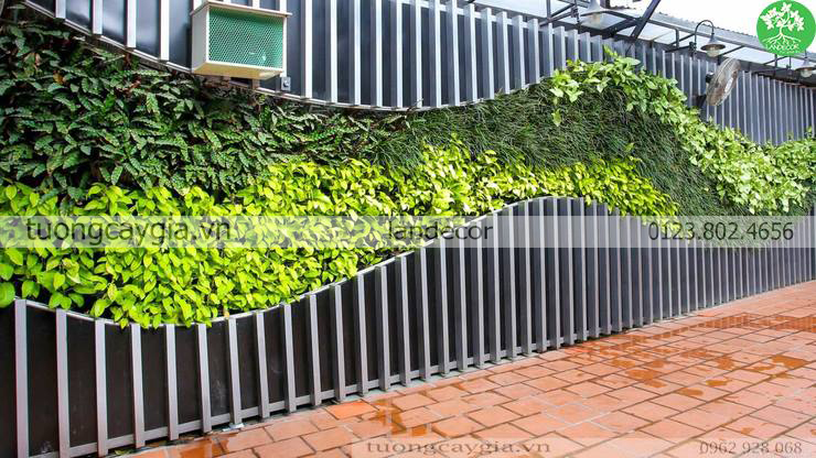 Thi công vườn đứng – Tường cây giả