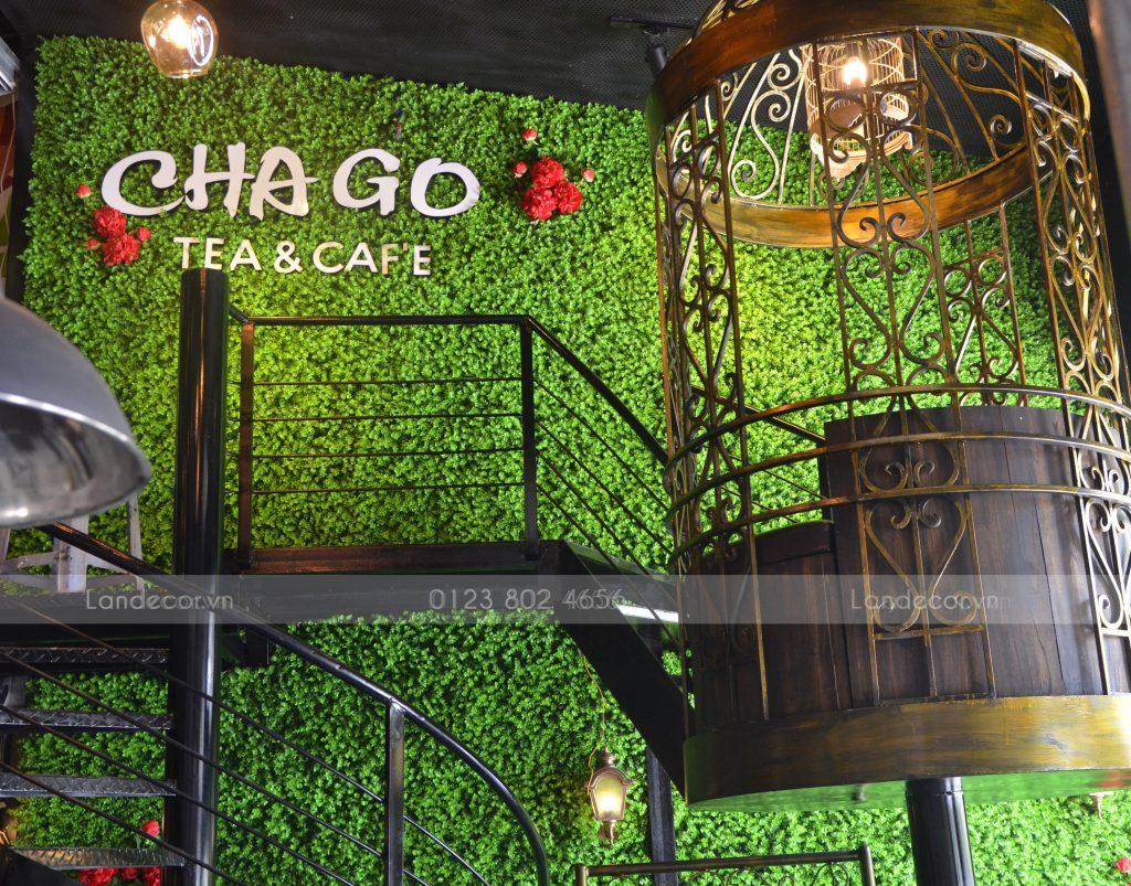 Công trình tường cỏ vảy ốc cho quán Cafe ChaGo Nguyễn Khánh Toàn