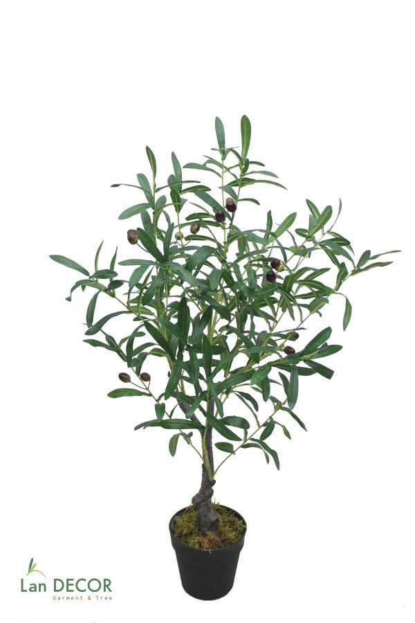 cây oliu giả đẹp