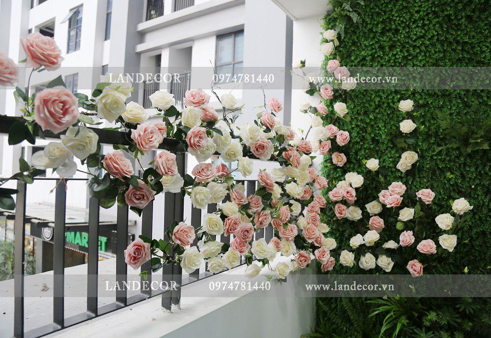 Giàn hoa hồng leo trang trí tiểu cảnh ban công